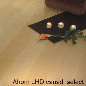 Ahorn_LHD_can_select